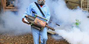 Fumigation services in Davao City