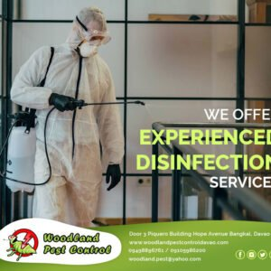 We offer experienced disinfection services for homes, autos, offices, groceries …