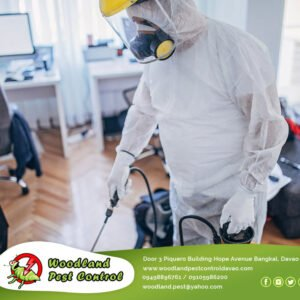 Need help disinfecting your business?   We've got you covered. Whatever you…