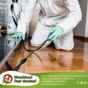 Our emergency service is quick and effective, Woodland Pest Control Services sta…