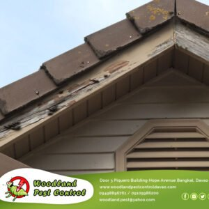 From small homes to large commercial establishments, we help you remove those cr…