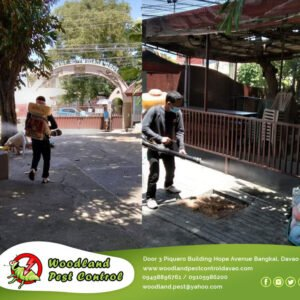 General Pest Control  Misting Services  Disinfection Services  For more detai…